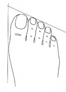 piede regolare