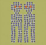 Illusioni-ottiche-dicembre-4