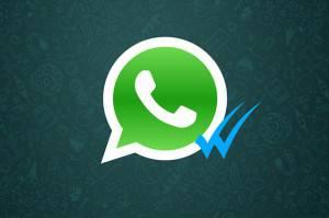 whatsapp-disattivare-doppia-spunta-blu1-638x425