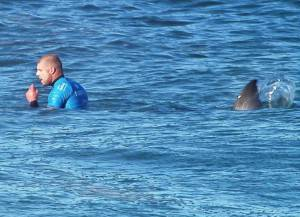 news-Mick-Fanning-Shark