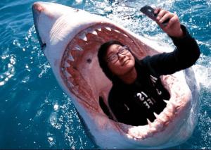 Tuhuong_shark