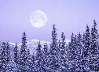 Solstizio di inverno