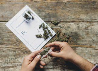 Cannabis cervello adolescenti
