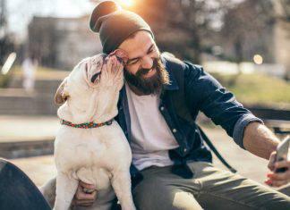 arti amputati saliva cane
