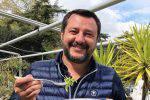 Matteo Salvini bacio francesca