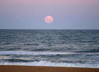 stasera luna rosa