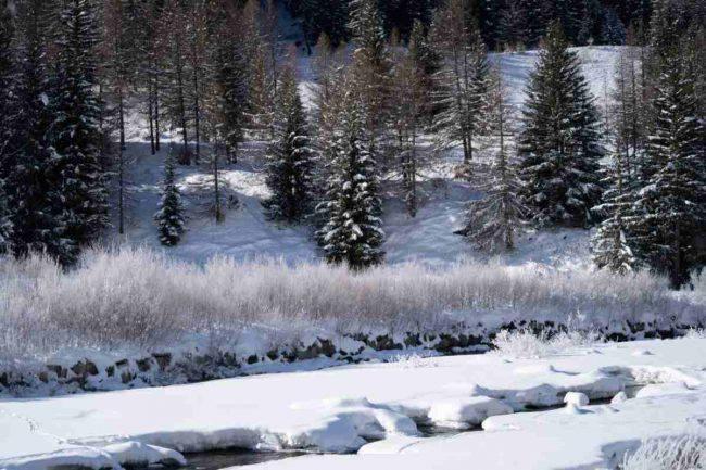 Meteo Inverno 2019-2020 gelo