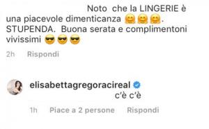 Elisabetta Gregoraci abito trasparente