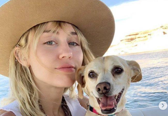 Miley Cyrus, flirt con Cody Simpson? I due si baciano al supermercato