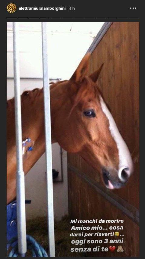 Elettra lamborghini lutto cavallo