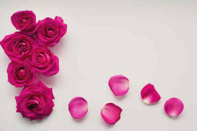 san-valentino-cosa-fare-single (3)