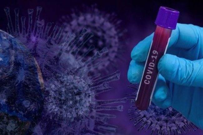 Il Coronavirus soffre l'estate e il caldo umido