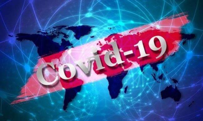 Coronavirus Galli infezioni