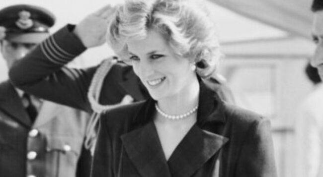 Principessa Diana lavoro