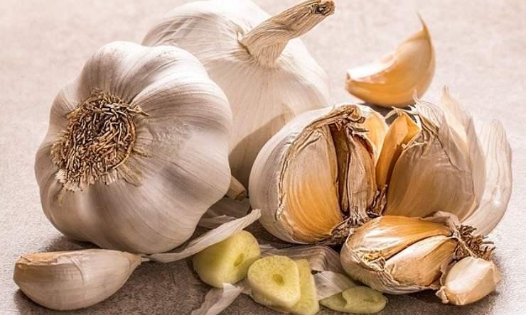 pulizie domestiche, l'aglio nel wc