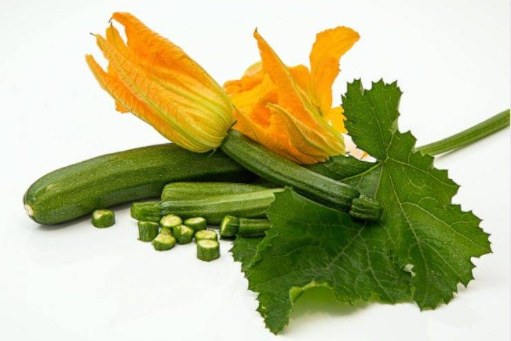 Zucchine durante la dieta: come riuscire a perdere fino a 3 kg in una settimana