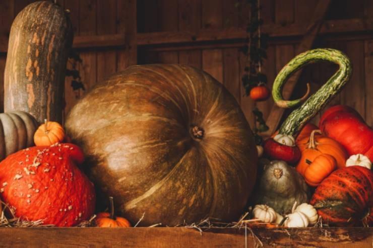 Oroscopo dell'autunno: tutti i segni, dal più al meno pronto ad affrontare la stagione