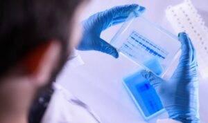 Coronavirus esperti