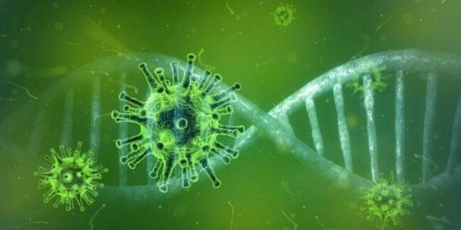 Coronavirus zone rosse