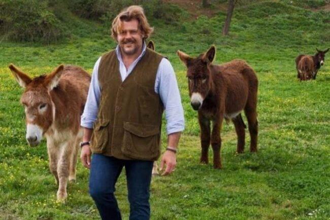 Ucciso un asino dell'allevamento di Lo Cicero: dramma terribile per l'azzurro del rugby