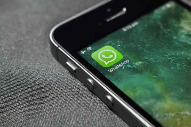 whatsapp rosa truffa
