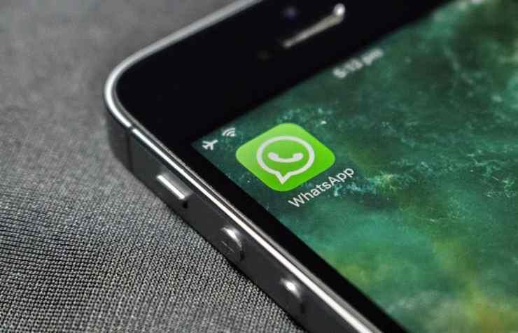 Whatsapp incredibile