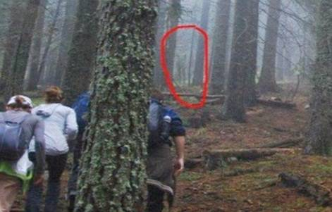 Alieno Gigante Ripreso Da Alcuni Escursionisti In Una